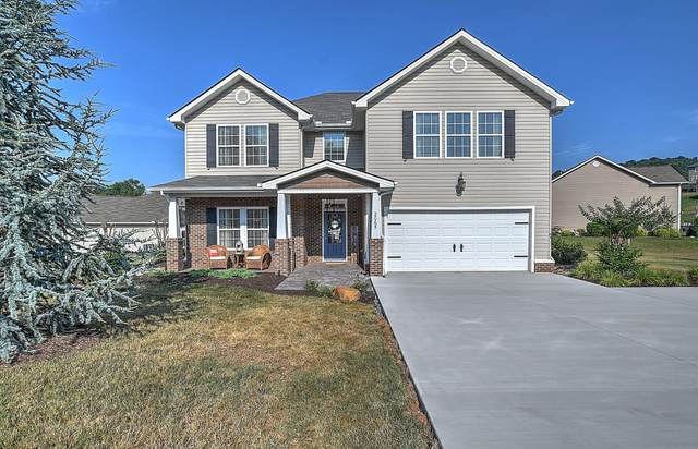 2065 Falling Leaf Drive, Kingsport, TN 37664 (MLS #9909929) :: Highlands Realty, Inc.