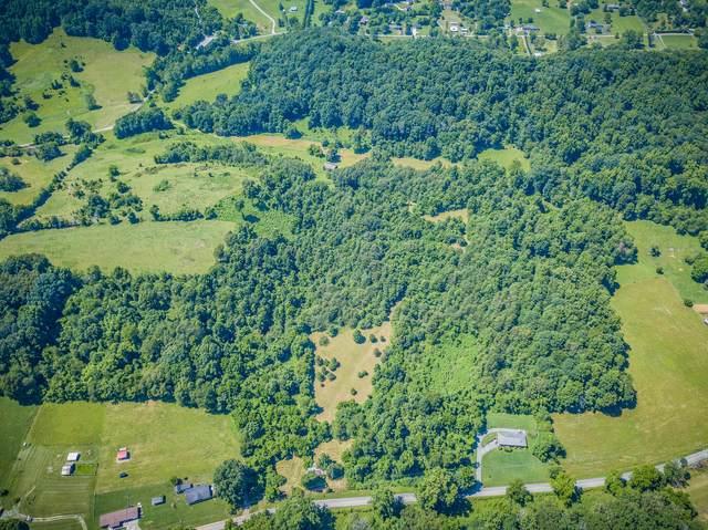 1091 Island Road, Blountville, TN 37617 (MLS #9910020) :: Highlands Realty, Inc.