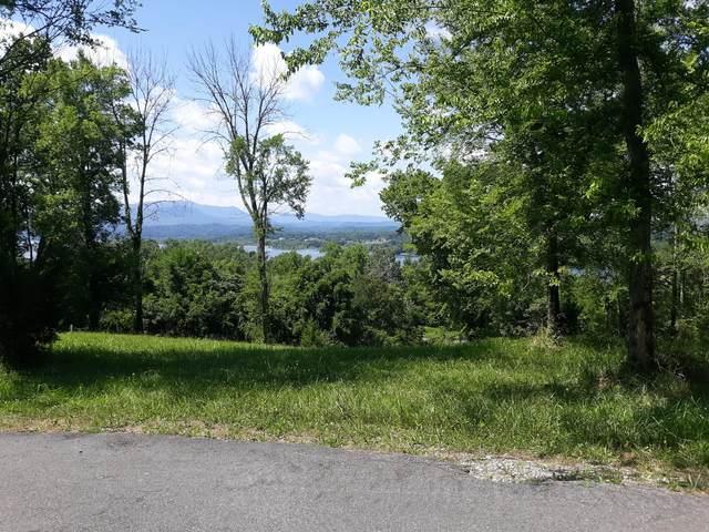 0 Ivy Way, Newport, TN 37821 (MLS #9910039) :: Bridge Pointe Real Estate