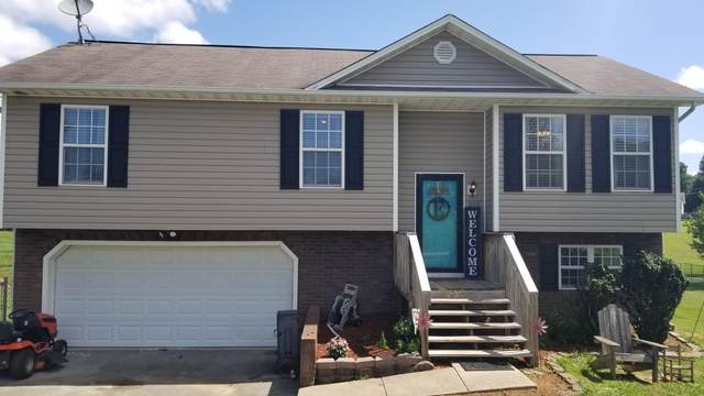312 Quail Landing Court Court, Telford, TN 37690 (MLS #9910079) :: Conservus Real Estate Group