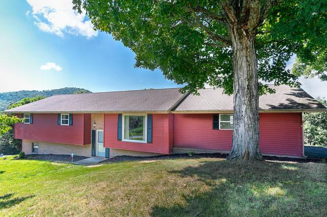 2803 Oak Cliff Court, Johnson City, TN 37601 (MLS #9910170) :: Bridge Pointe Real Estate