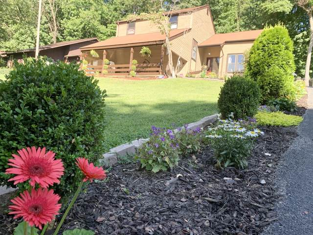 709 Marboro Drive, Johnson City, TN 37601 (MLS #9910354) :: Conservus Real Estate Group