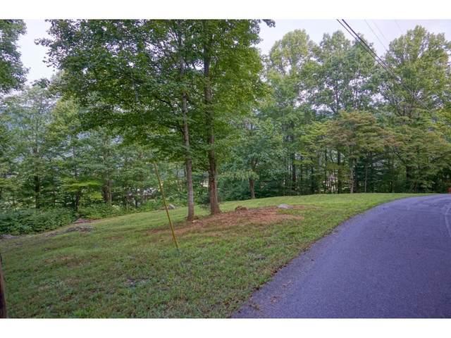 302 Golf Course Road, Unicoi, TN 37692 (MLS #9910369) :: Bridge Pointe Real Estate