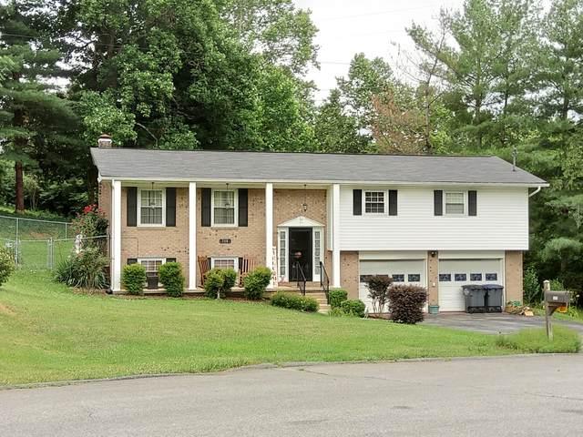 508 Adair Court, Kingsport, TN 37663 (MLS #9910404) :: Bridge Pointe Real Estate