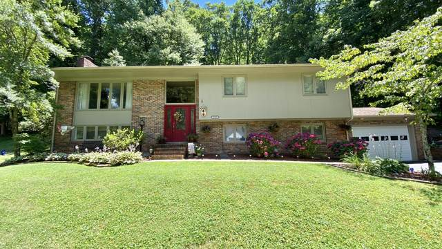 1710 Valley View Drive, Big Stone Gap, VA 24219 (MLS #9910430) :: Red Door Agency, LLC