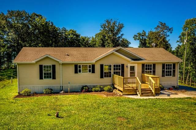 599 Edmonson (Aka Collins Ridge) Road, Washburn, TN 37888 (MLS #9910480) :: Bridge Pointe Real Estate