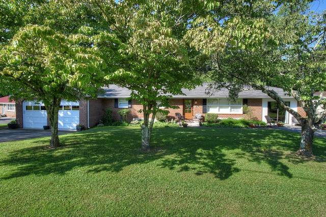 223 Bell Street, Blountville, TN 37617 (MLS #9910508) :: Conservus Real Estate Group