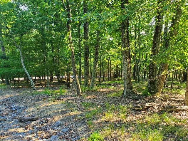 1324 Muskogee Drive, Mooresburg, TN 37811 (MLS #9910597) :: Conservus Real Estate Group