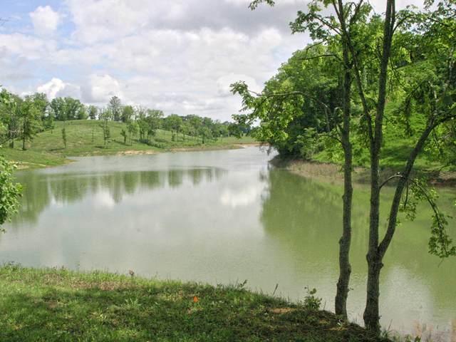 Lot 21 Ferry Hill Road, Dandridge, TN 37725 (MLS #9910612) :: Bridge Pointe Real Estate
