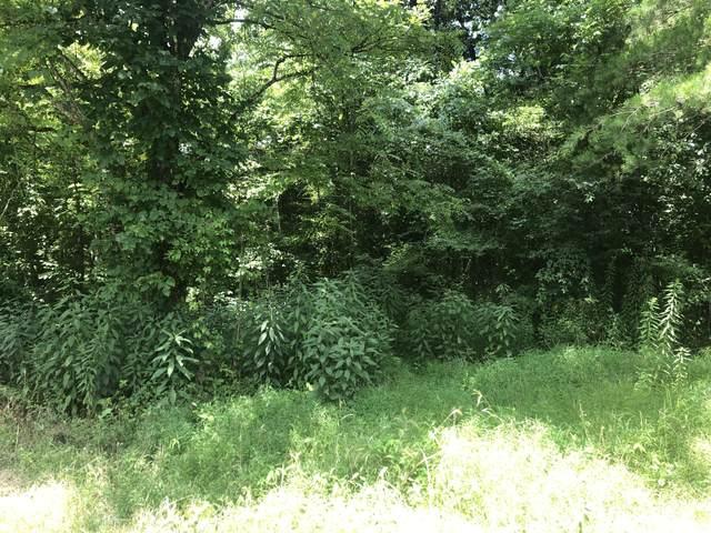 00 Mountain Loop, Thorn Hill, TN 37881 (MLS #9910639) :: Bridge Pointe Real Estate