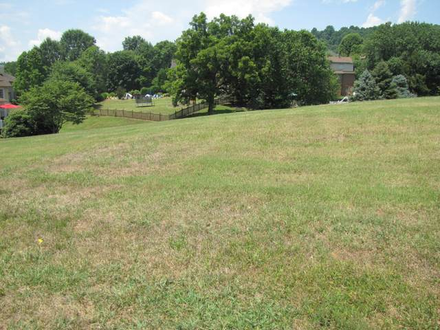 Lot 99 Ashfield Drive, Kingsport, TN 37664 (MLS #9910642) :: The Lusk Team