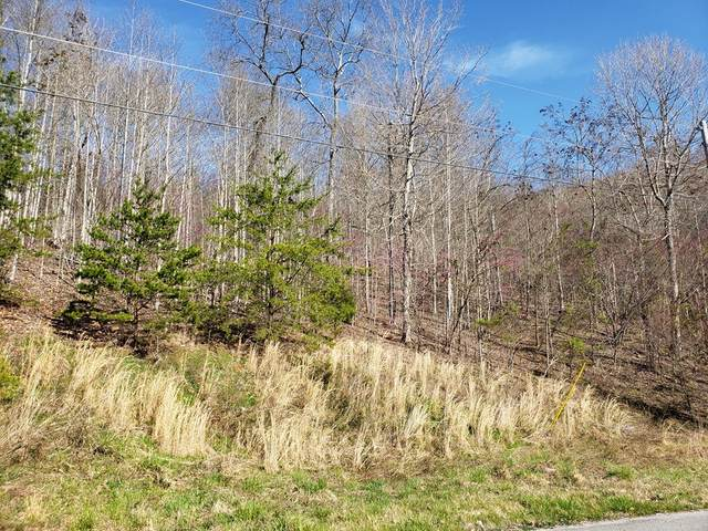 Lot 576 Whistle Valley Road, New Tazewell, TN 37825 (MLS #9910710) :: Bridge Pointe Real Estate