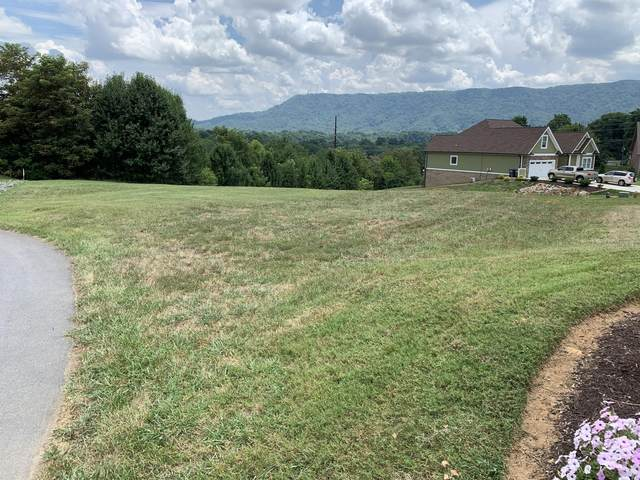 242 Riverwatch Circle, Kingsport, TN 37660 (MLS #9910744) :: Highlands Realty, Inc.
