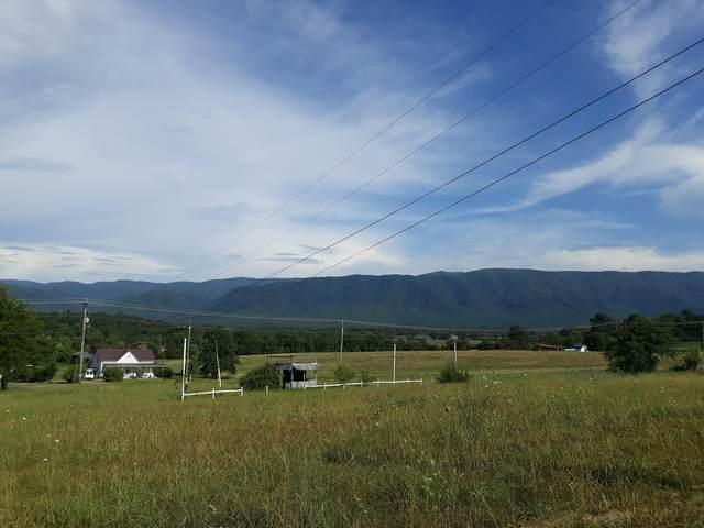 Tbd Camp Creek Rd, Greeneville, TN 37743 (MLS #9910757) :: Highlands Realty, Inc.