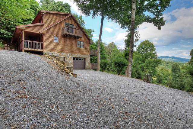 109 Deer Run Drive, Flag Pond, TN 37657 (MLS #9910825) :: Bridge Pointe Real Estate