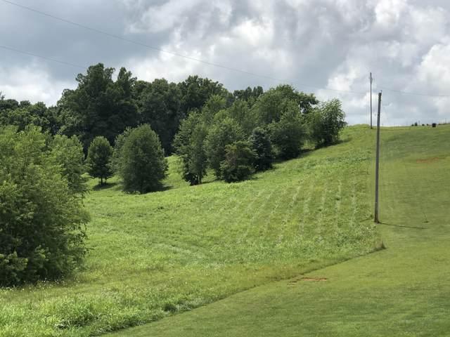 300 Mulberry Bend, Jonesborough, TN 37659 (MLS #9911040) :: Highlands Realty, Inc.