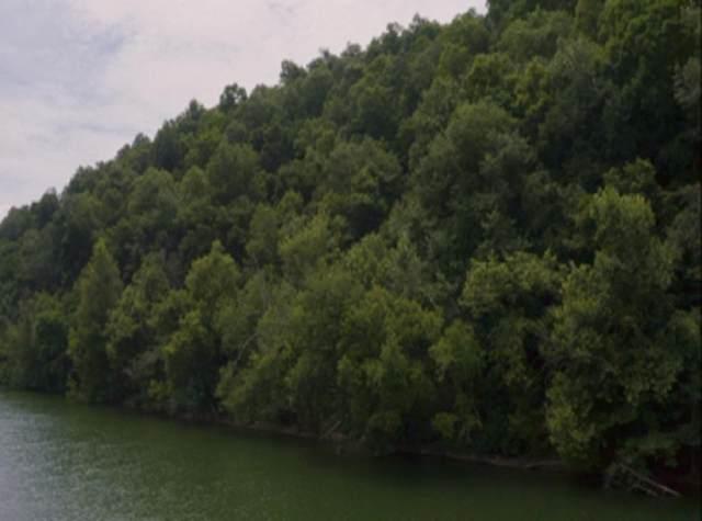 16.7 Acres Long Beard Lane, Tazewell, TN 37879 (MLS #9911044) :: Bridge Pointe Real Estate