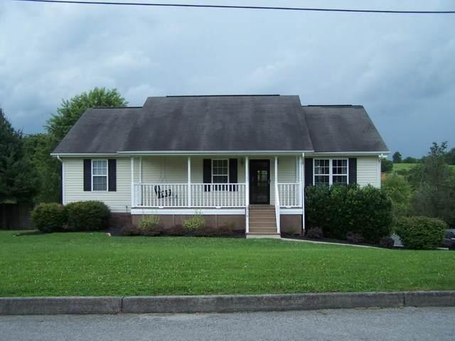 215 Chimney Top Lane, Jonesborough, TN 37659 (MLS #9911129) :: Bridge Pointe Real Estate