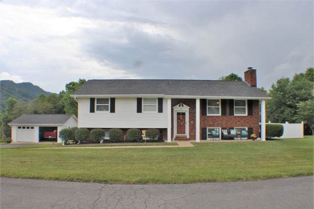 1201 Lambeth Place, Kingsport, TN 37660 (MLS #9911135) :: Bridge Pointe Real Estate