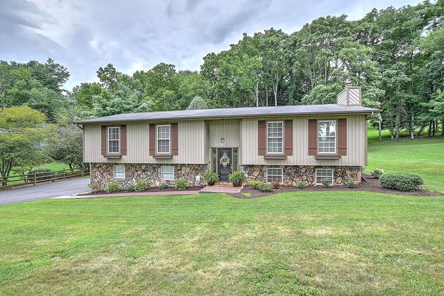 4807 Lake Park Court, Kingsport, TN 37664 (MLS #9911221) :: Conservus Real Estate Group