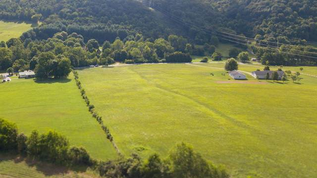 0 Ripley Island Road, Chuckey, TN 37641 (MLS #9911227) :: Conservus Real Estate Group