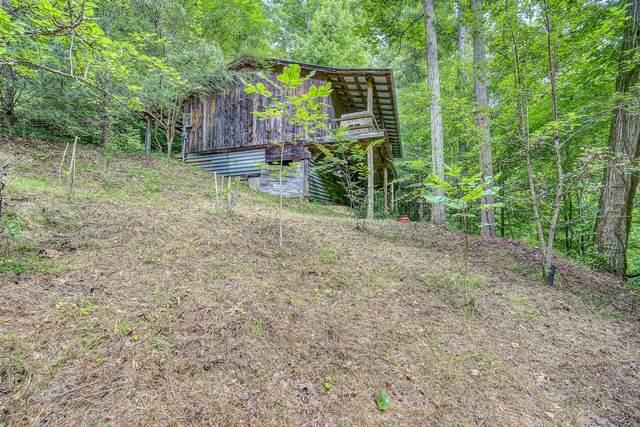 150 Misty Blue Lane, Erwin, TN 37650 (MLS #9911252) :: Bridge Pointe Real Estate