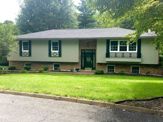 1808 Briarcliff Drive, Elizabethton, TN 37643 (MLS #9911265) :: Conservus Real Estate Group