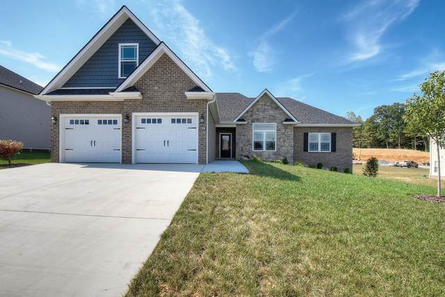 630 Harbor Approach, Johnson City, TN 37601 (MLS #9911267) :: Red Door Agency, LLC