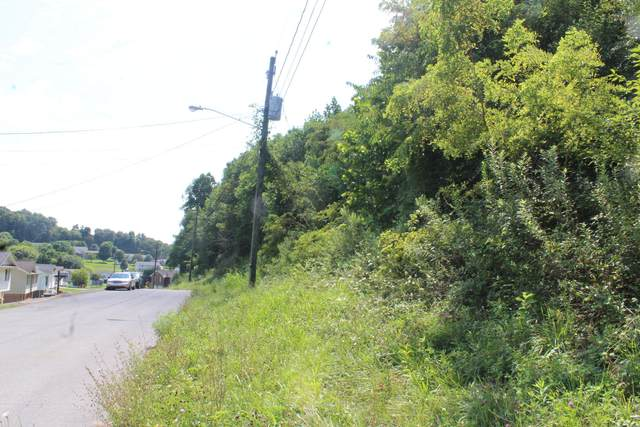 425 Creekside Drive, Mount Carmel, TN 37645 (MLS #9911350) :: Highlands Realty, Inc.