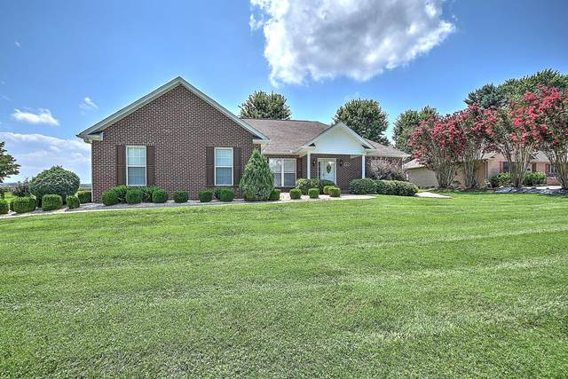 2217 Collins Street, Morristown, TN 37814 (MLS #9911354) :: Bridge Pointe Real Estate