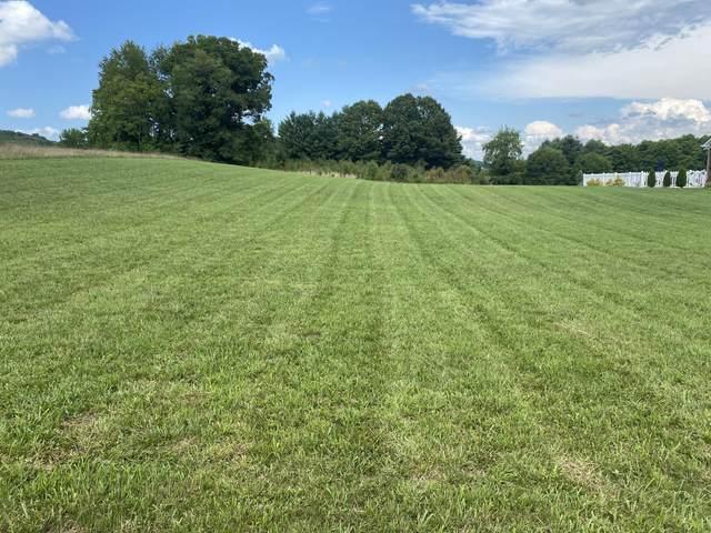 1574 Wolfe Lane, Mount Carmel, TN 37645 (MLS #9911362) :: Highlands Realty, Inc.