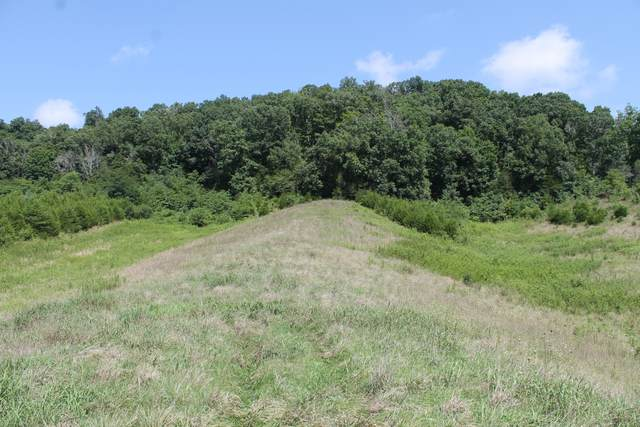 000 Lonesome Pine Trail, Greeneville, TN 37745 (MLS #9911388) :: Bridge Pointe Real Estate