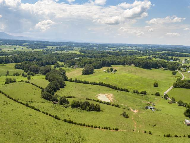 Tbd Barren Valley Road, Chuckey, TN 37641 (MLS #9911397) :: Conservus Real Estate Group