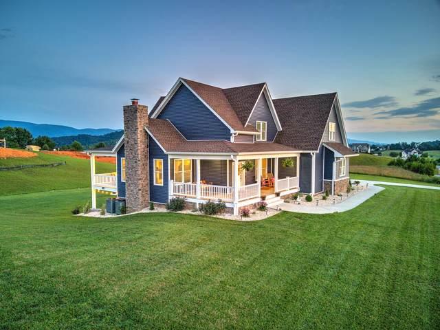 133 Lakeview Estates Drive, Bristol, TN 37620 (MLS #9911416) :: Highlands Realty, Inc.