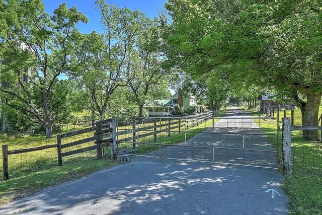241 Riverside Road, Bluff City, TN 37618 (MLS #9911417) :: Bridge Pointe Real Estate