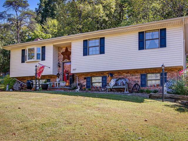 227 Lane Street, Church Hill, TN 37642 (MLS #9911428) :: Tim Stout Group Tri-Cities