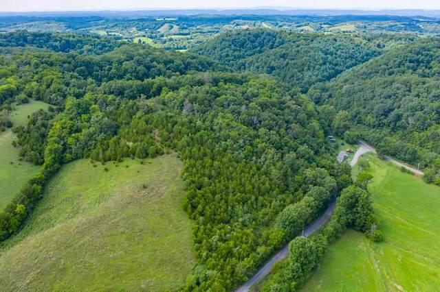 30 Old Lane Road, Mosheim, TN 37818 (MLS #9911430) :: Conservus Real Estate Group