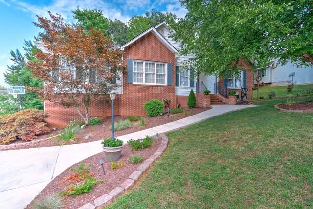 116 Ashley Drive, Mount Carmel, TN 37645 (MLS #9911433) :: Highlands Realty, Inc.