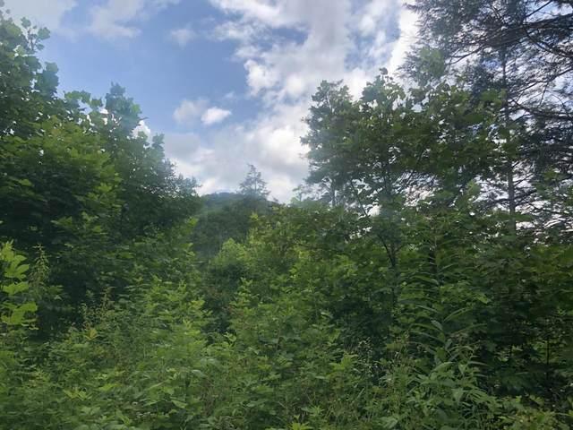 Tbd Dark Hollow Road, Roan Mountain, TN 37687 (MLS #9911442) :: Highlands Realty, Inc.