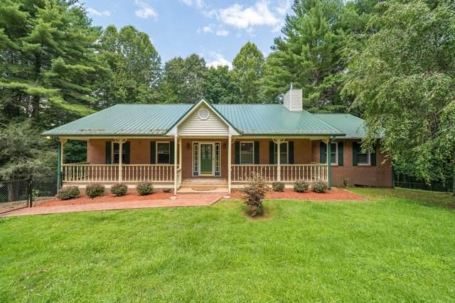 623 Mink Hills Road, Mountain City, TN 37683 (MLS #9911459) :: Bridge Pointe Real Estate