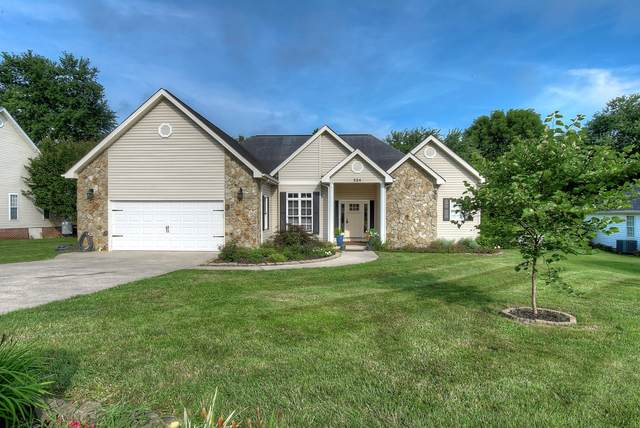 224 Wiltshire Drive, Gray, TN 37615 (MLS #9911469) :: Highlands Realty, Inc.
