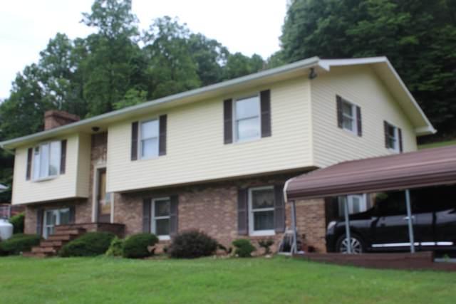 101 Mustang Drive, Honaker, VA 24260 (MLS #9911484) :: Tim Stout Group Tri-Cities