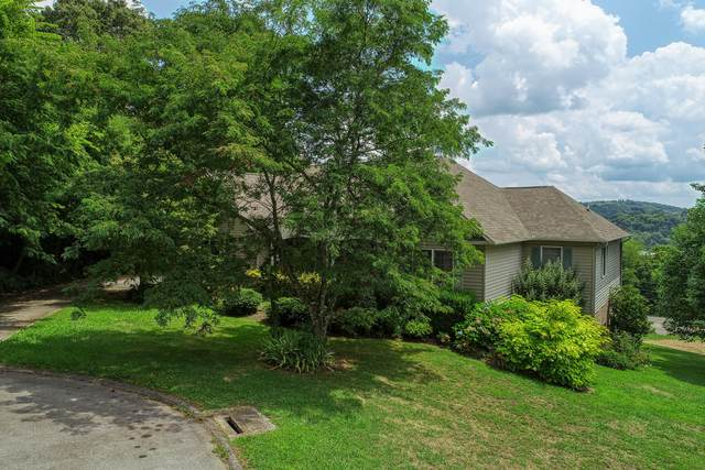 136 Spindletop Drive, Rogersville, TN 37857 (MLS #9911517) :: Conservus Real Estate Group