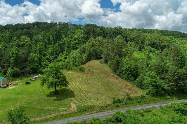 00 Butcher Valley Road, Rogersville, TN 37857 (MLS #9911554) :: Conservus Real Estate Group