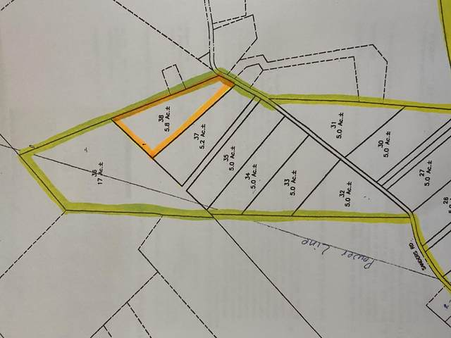 00 Sanders Rd, Greeneville, TN 37743 (MLS #9911559) :: Conservus Real Estate Group