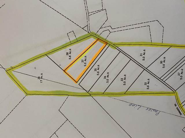00 Sanders Rd, Greeneville, TN 37743 (MLS #9911561) :: Conservus Real Estate Group