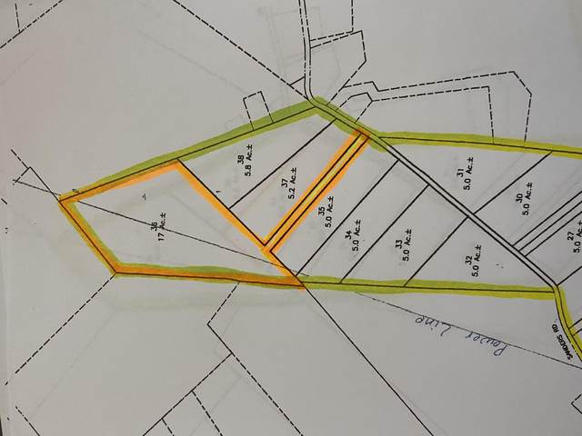 00 Sanders Rd, Greeneville, TN 37743 (MLS #9911562) :: Conservus Real Estate Group
