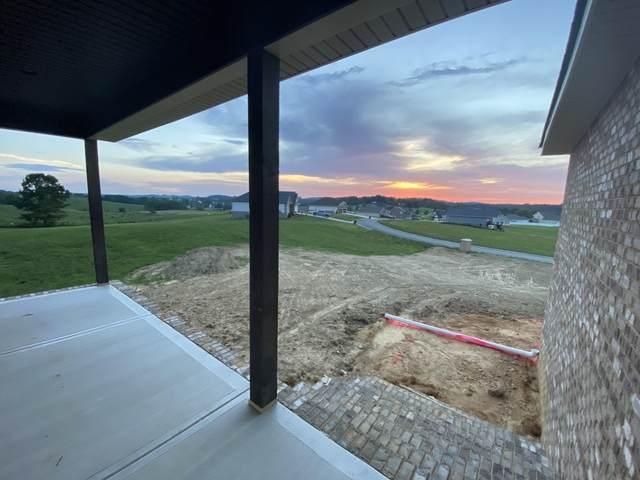 774 Brady Way Way, Jonesborough, TN 37659 (MLS #9911614) :: Bridge Pointe Real Estate