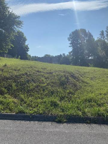 Lot 34 Timberidge Trail, Kingsport, TN 37660 (MLS #9911638) :: Red Door Agency, LLC