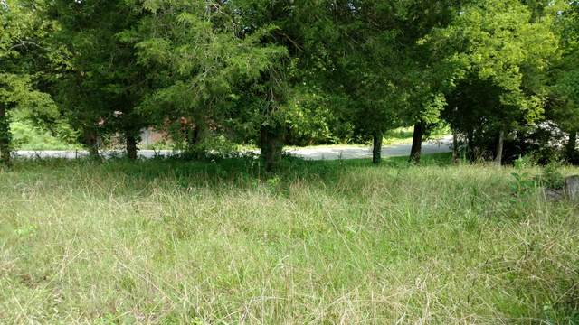 Lot 6 Shady Lane, Morristown, TN 37814 (MLS #9911653) :: Tim Stout Group Tri-Cities